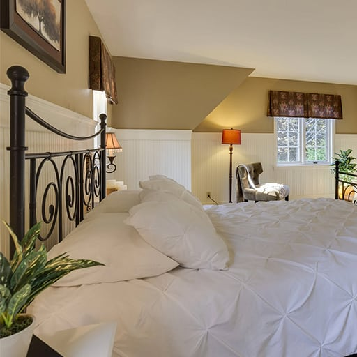 bed bug removal vancouver