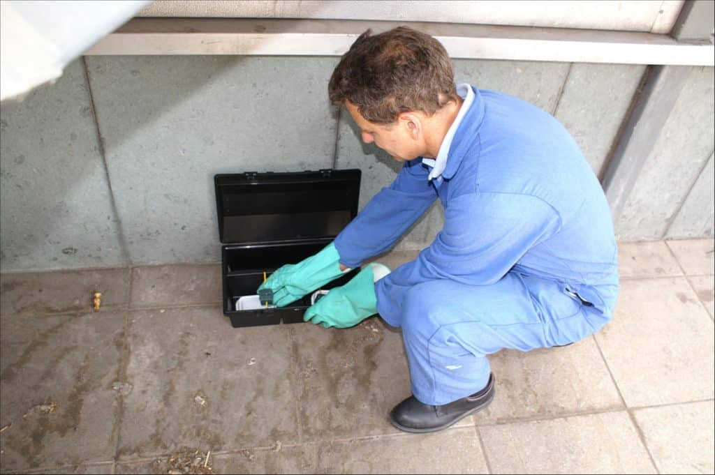 What to Look for When Hiring a Pest Control Expert in Vancouver
