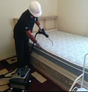 Modern chemical treatments for pest control