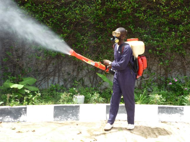 Why Professional Pest Control Is Very Safe