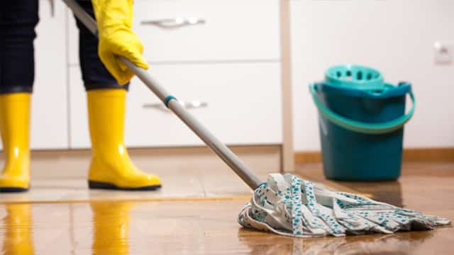 Clean infested bed bug areas