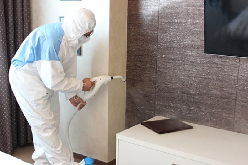 How Long Should You Stay Out of the House After Pest Control Treatment?